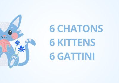 Naissances 9 et 16 Jui. 2021 – 6 chatons